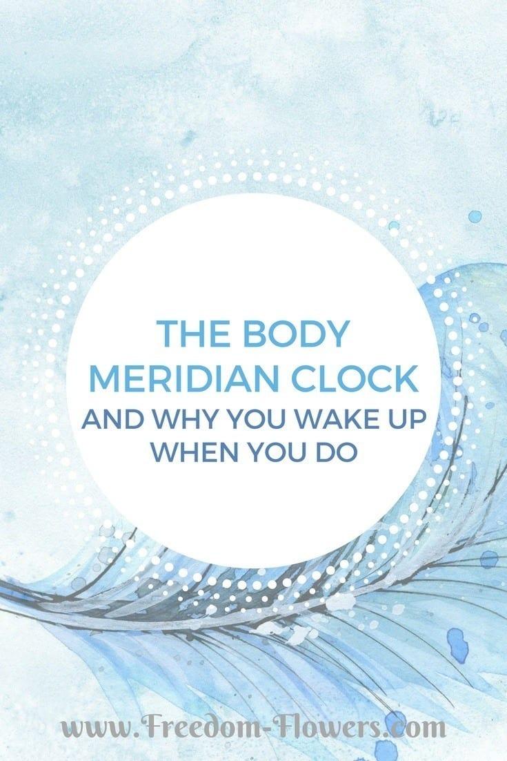 The body meridian clock
