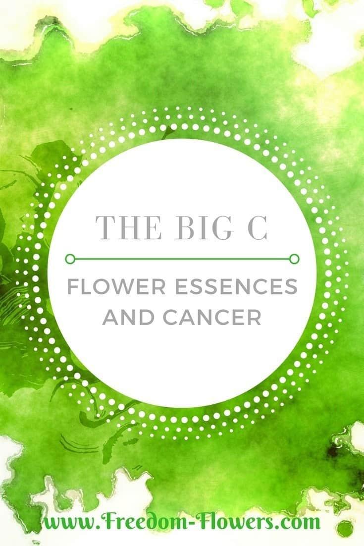 Flower essences and cancer
