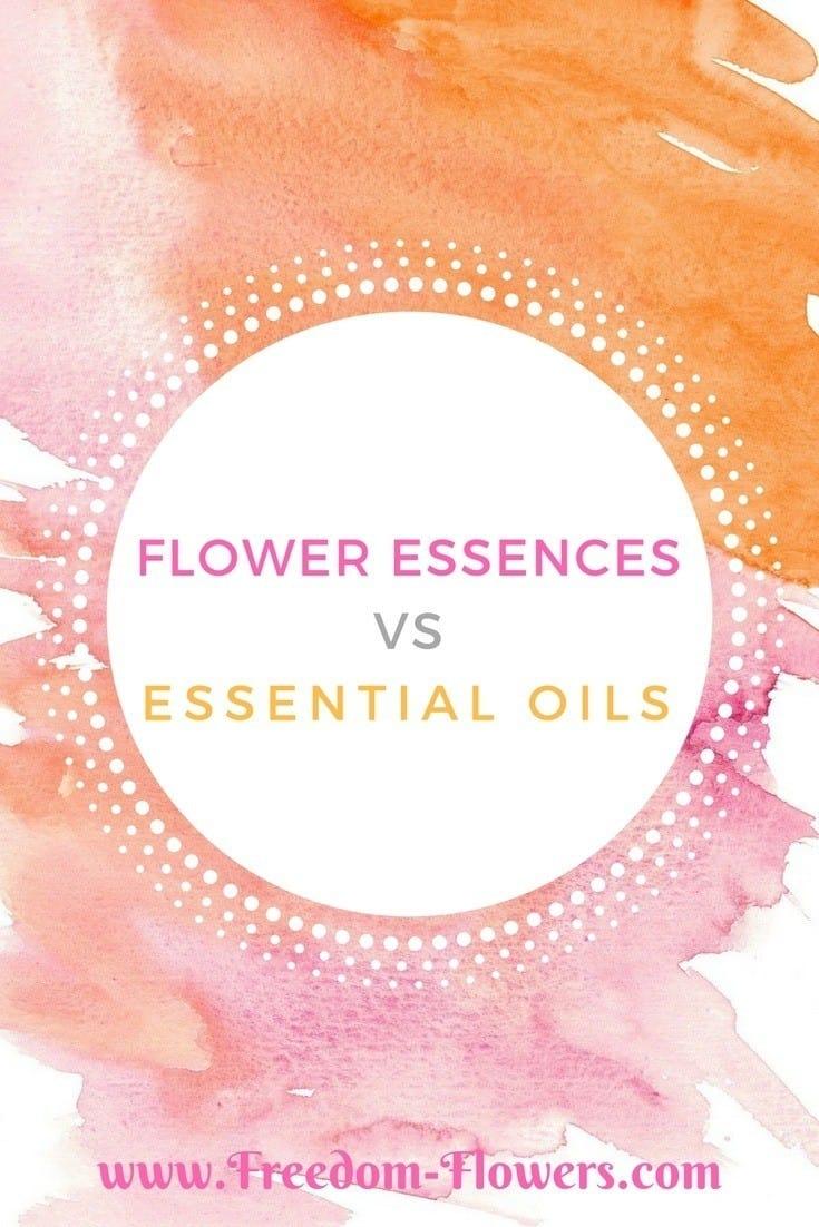 flower essences vs essential oils