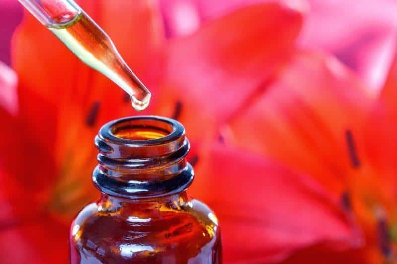 A flower essence dropper and bottle with a red flower for a background.