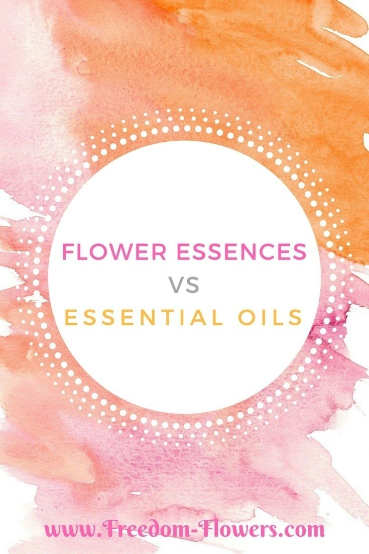 flower essences vs essential oils