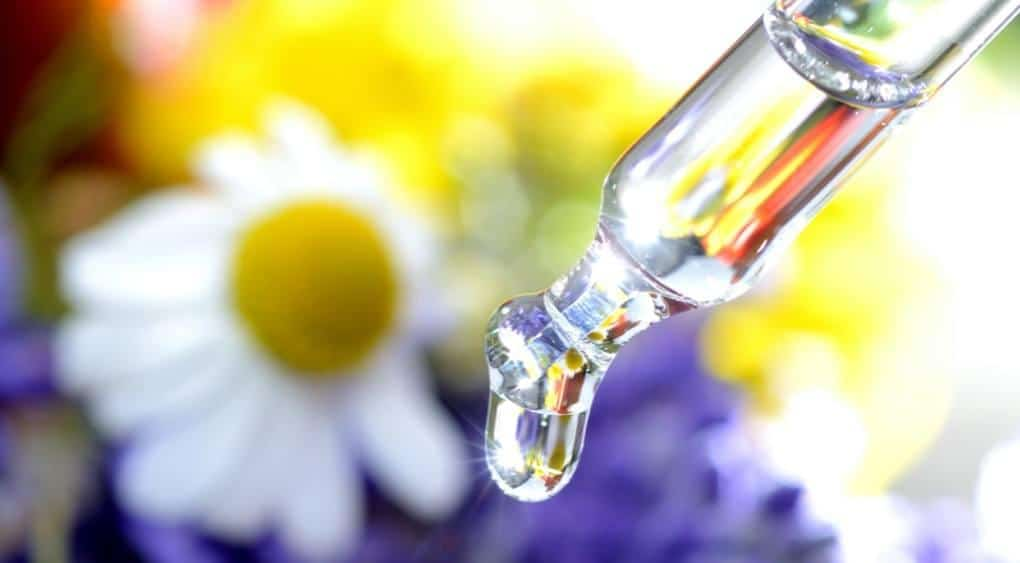 Dropper dropping essence in the sunlight with a blurred chamomile flower in the background